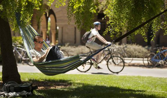 Graduate student found a shady place along Lasuen Mall to study history in his hammock.