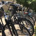 parked bicycles at Stanford
